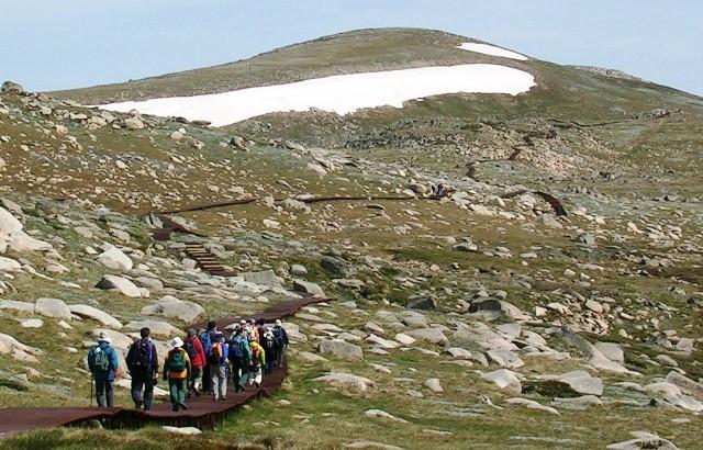 オーストラリア大陸最高峰Mt.コジオスコ登頂と世界遺産ブルーマウンテンズ・ハイキング 7日間