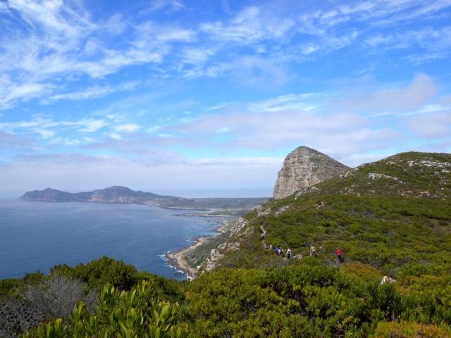 南アフリカ・ケープ半島ハイキングとビクトリア滝、サファリ  9日間