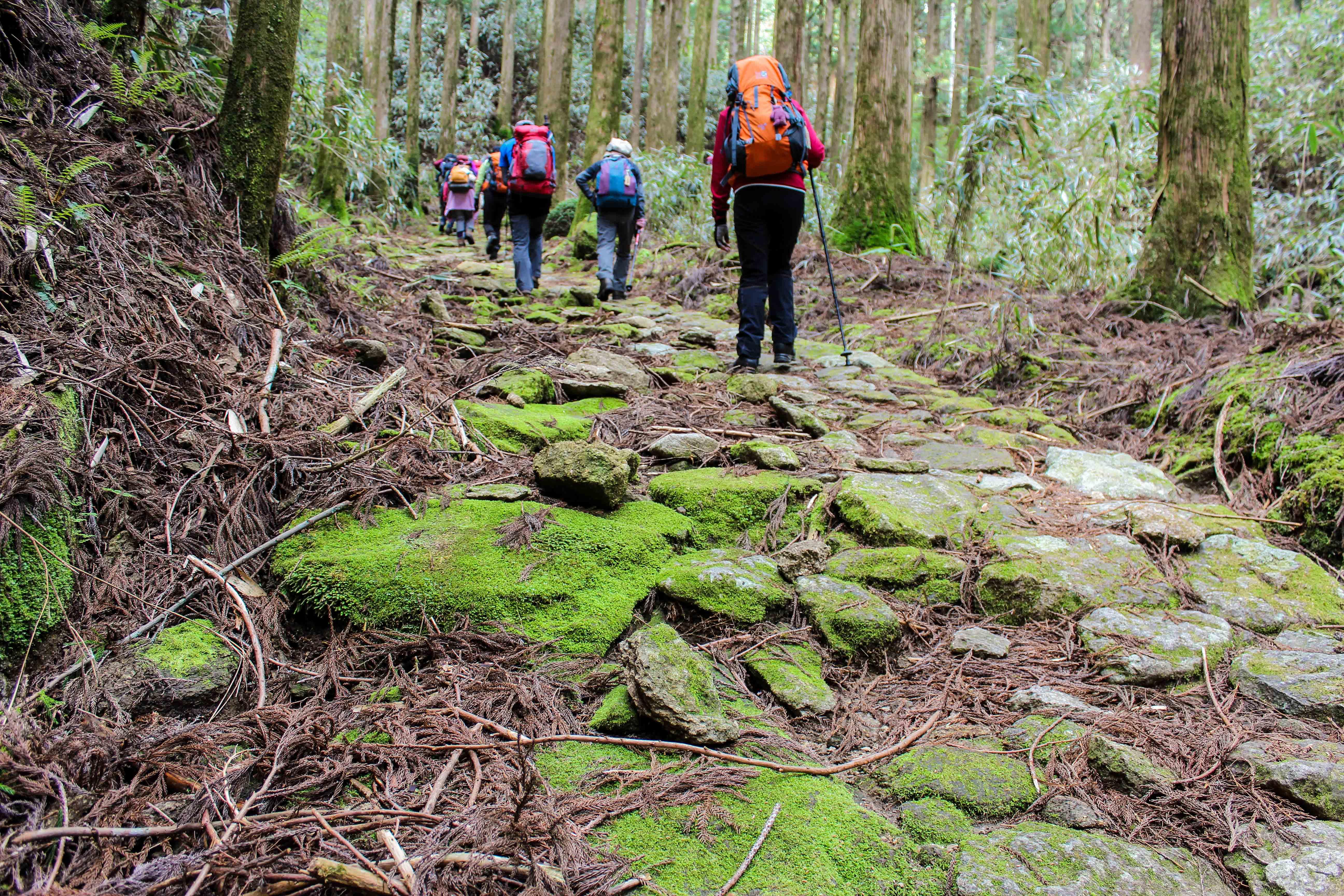 熊野古道・大雲取、小雲取越えと那智三名滝めぐり 3日間