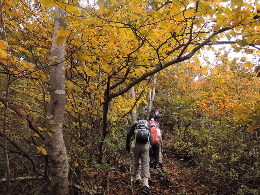【名古屋駅発着】秋の信越トレイル「セクション4~6」を歩く 4日間