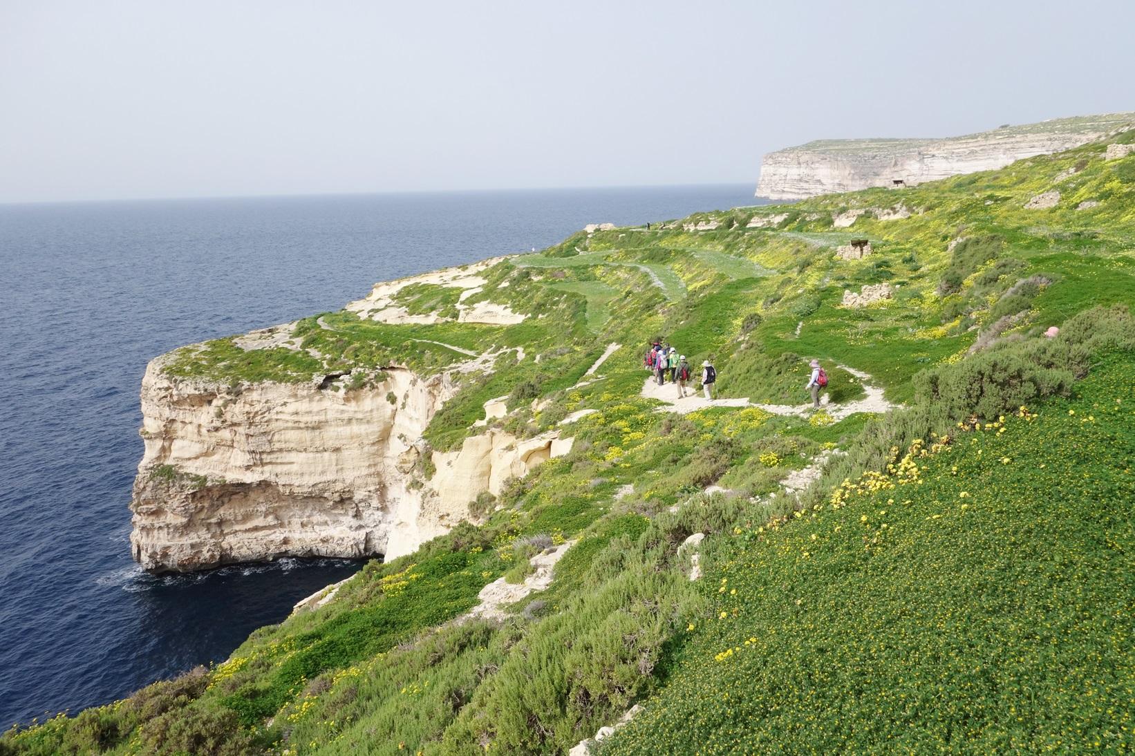 【大募集中】2月27日出発 春の花咲くマルタ諸島ハイキングと世界遺産ヴァレッタ 8日間