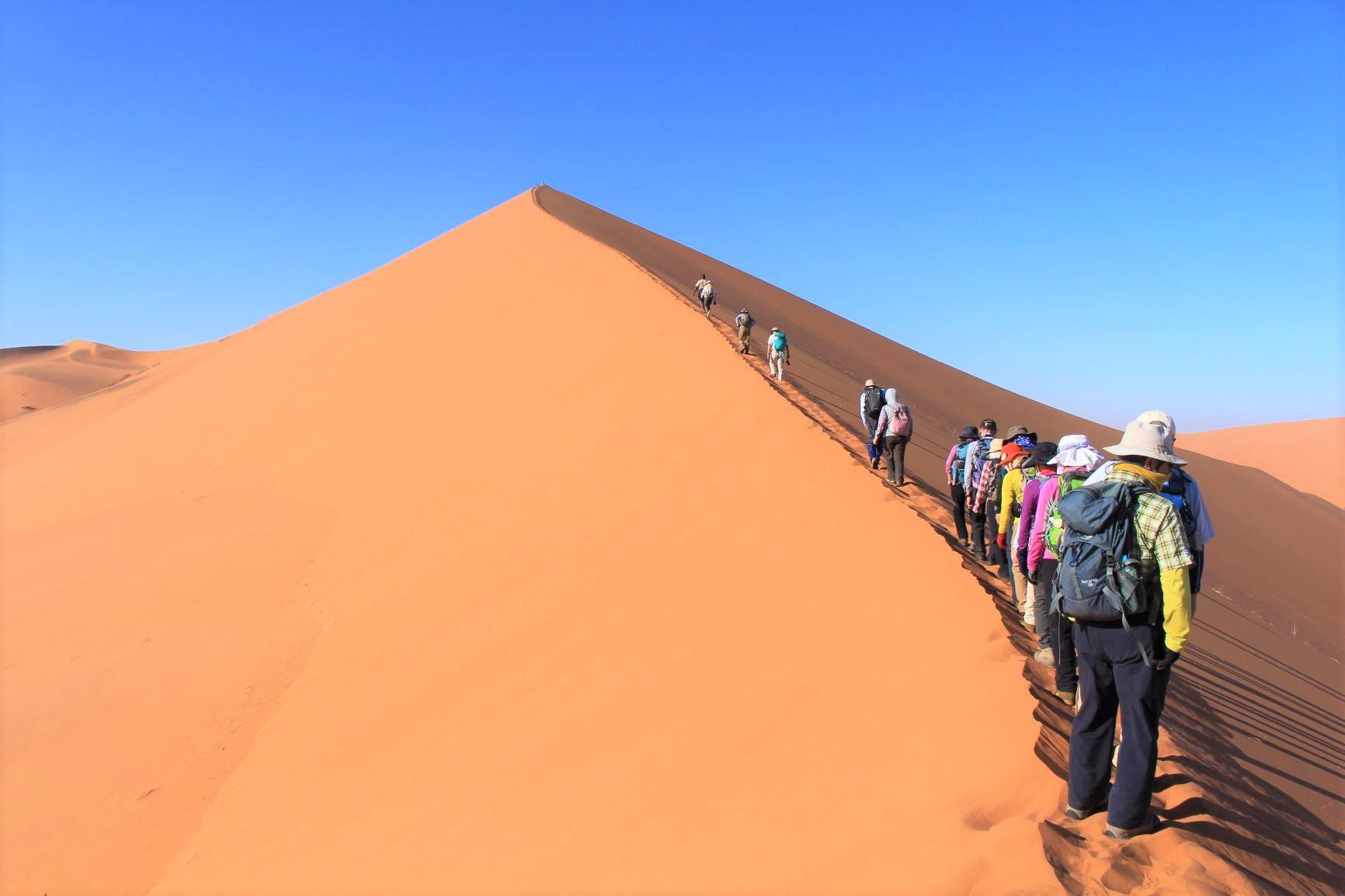 【催行間近・大募集中】11月8日出発 南部アフリカ2つの世界自然遺産ナミブ砂漠とケープ半島ハイキング 10日間