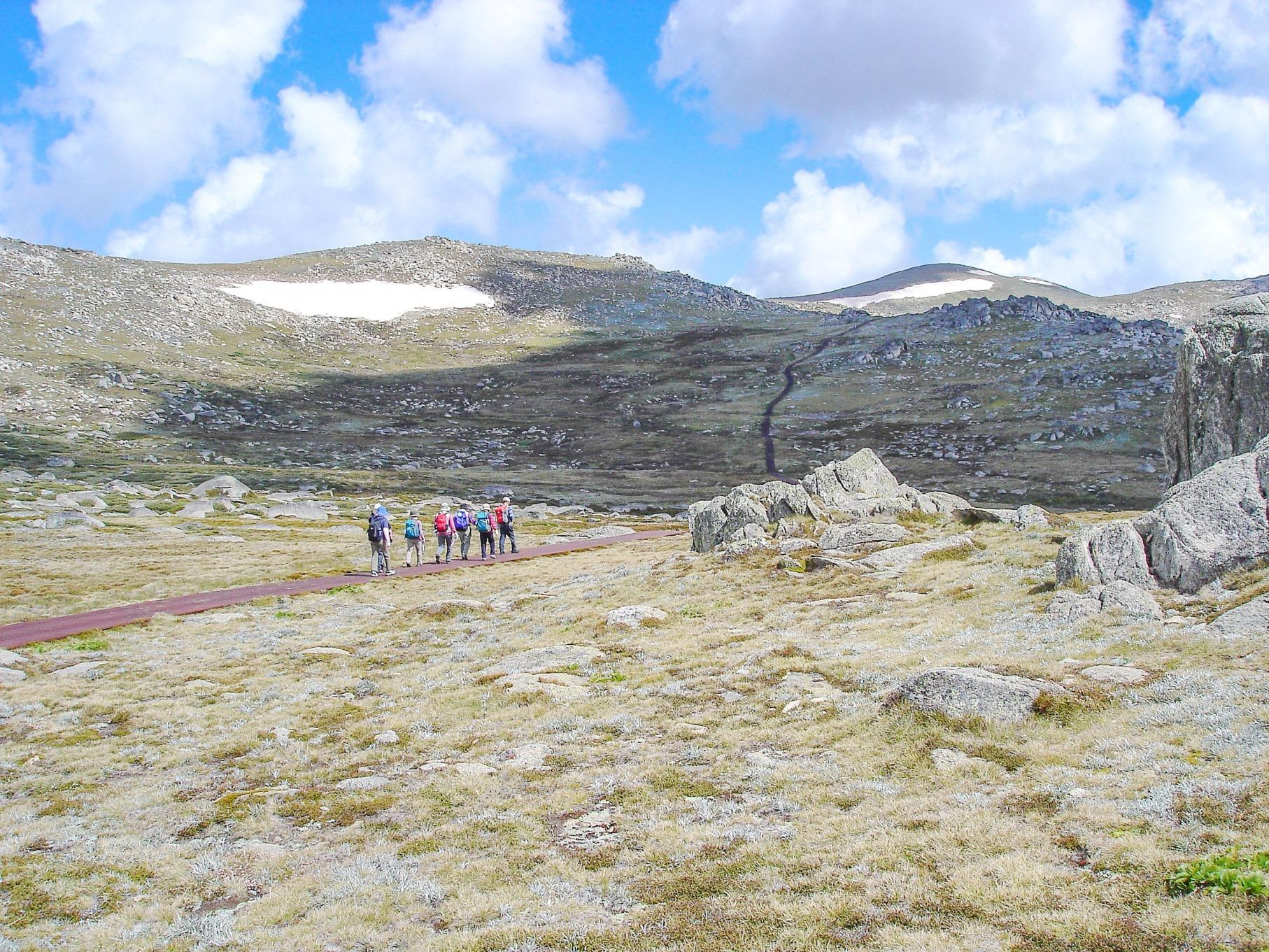 オーストラリア大陸最高峰Mt.コジオスコ登頂とタスマニア島フラワーハイキング 8日間