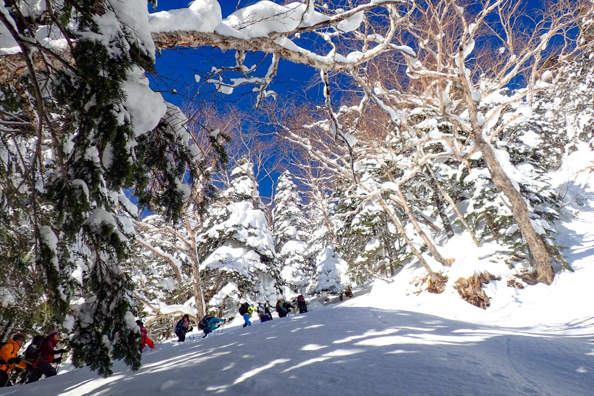 鈴木みきさんと行く『山っていい友!』~しらびそ小屋に泊まる~ 北八ヶ岳 雪の中山峠越え 2日間