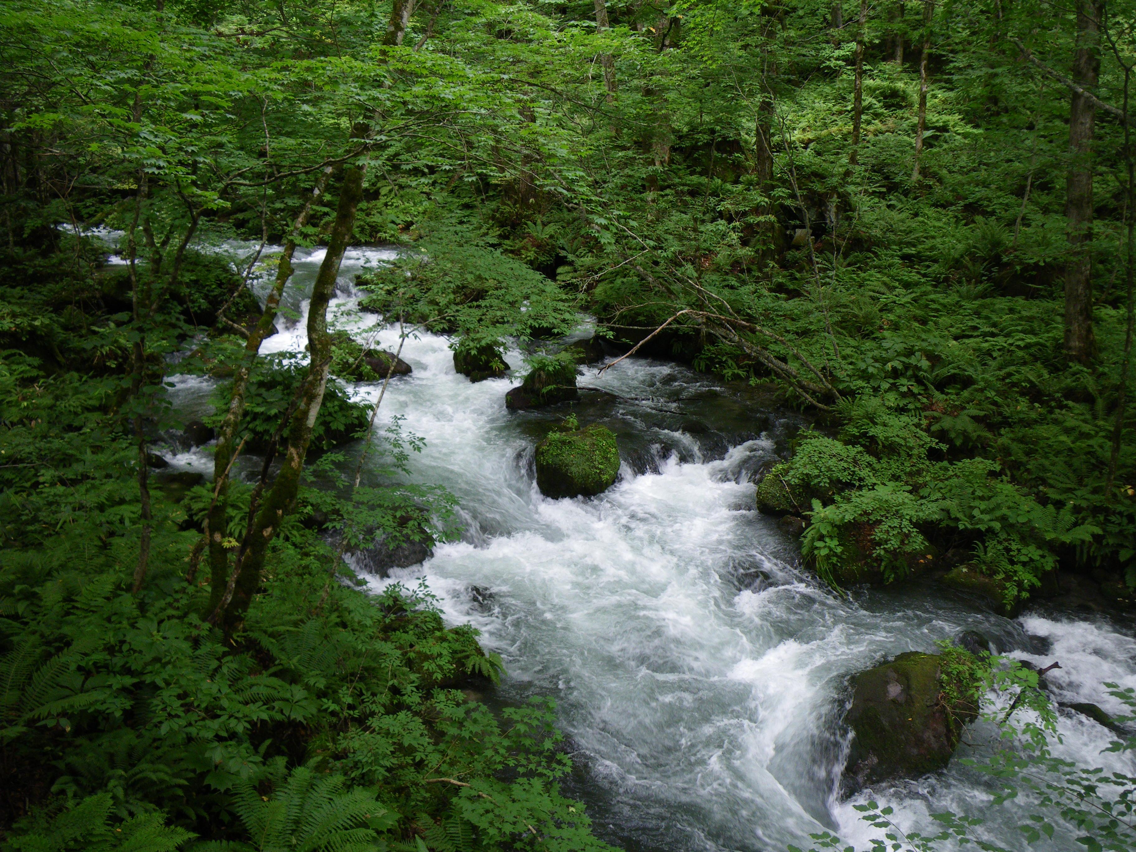 岩木山、白神岳、八甲田山と奥入瀬渓流 5日間