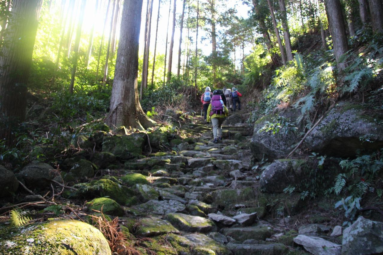 【世界遺産の古道を歩く】熊野古道伊勢路 伊勢朝熊山とツヅラト峠 馬越峠・八鬼山峠 3日間