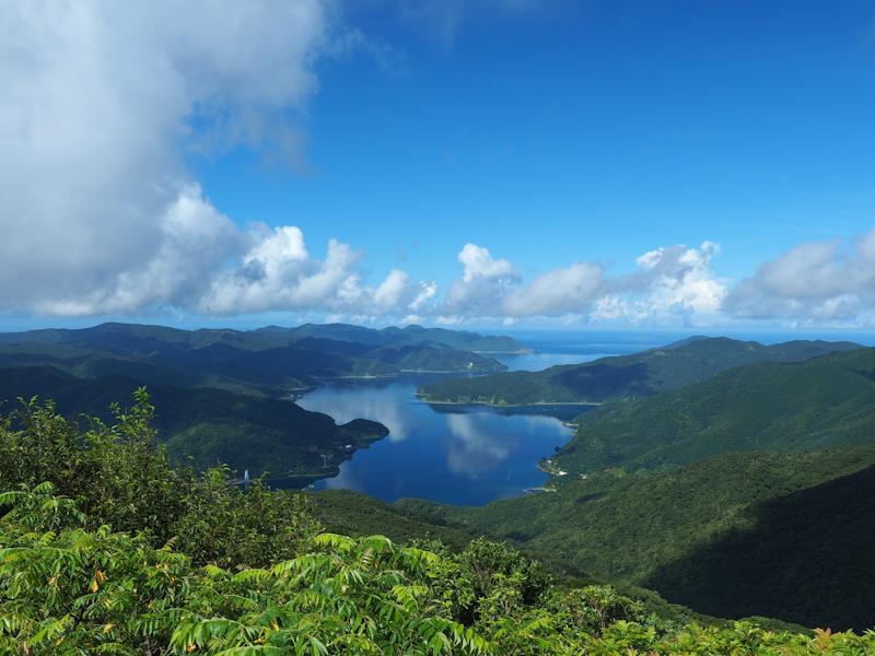 岩崎元郎の『山の遠足』<br> 奄美大島 魅惑の大自然と最高峰・湯湾岳登頂 4日間