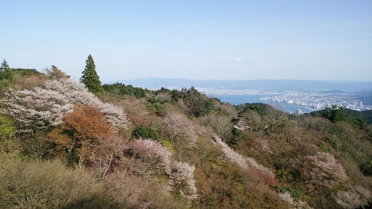桜舞う!比良比叡トレイル全踏破 5日間