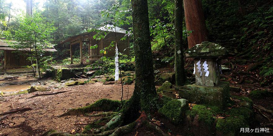 岩崎元郎の『山の遠足』熊野古道・大日越と熊野川舟下り 3日間