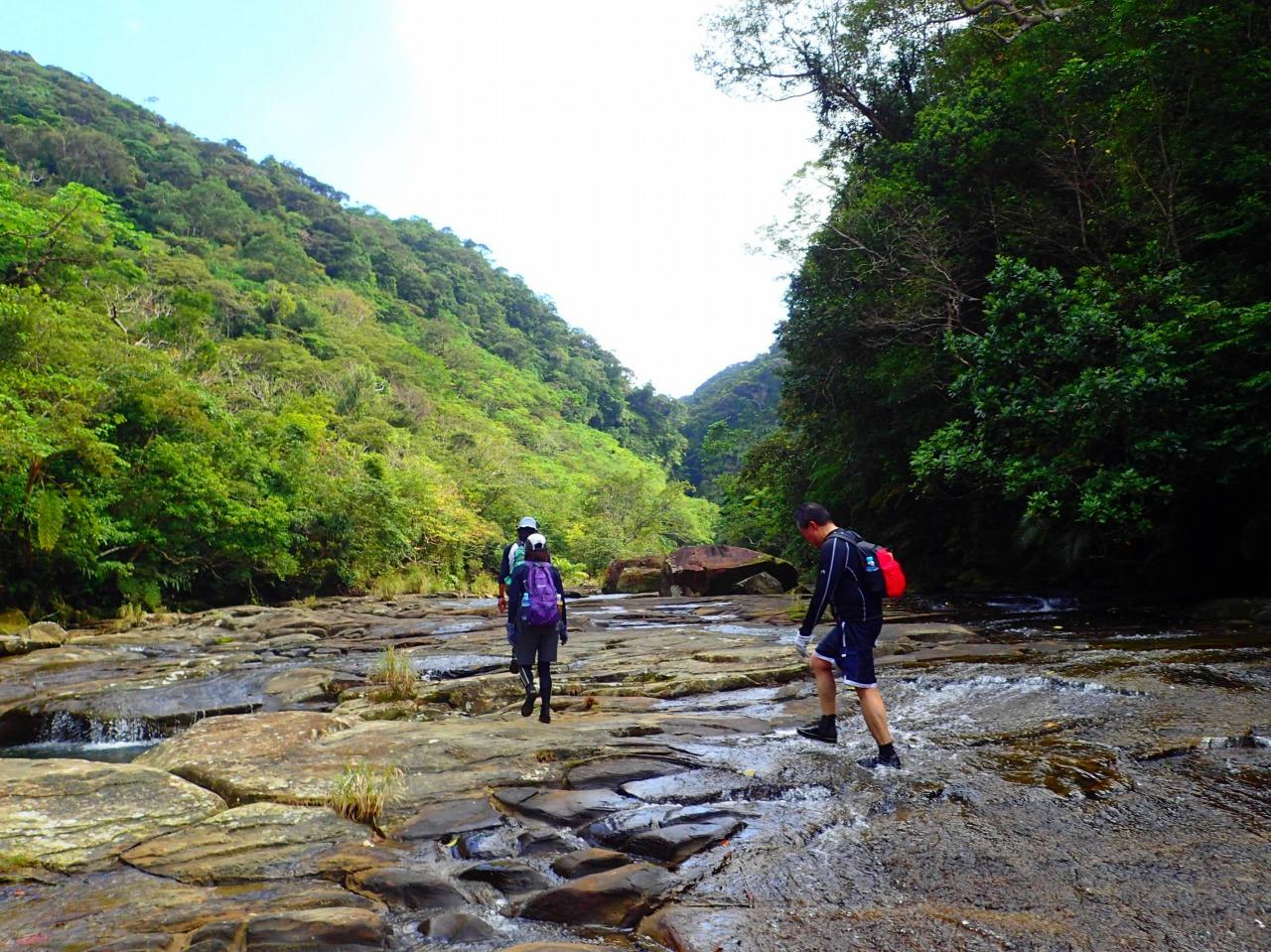 【GW特別企画】西表島大縦断と沖縄県最高峰 於茂登岳登頂 4日間