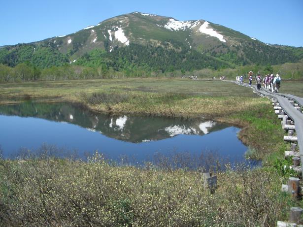 高山植物に出会う山<br>アヤメ平から尾瀬ヶ原、 至仏山 2日間