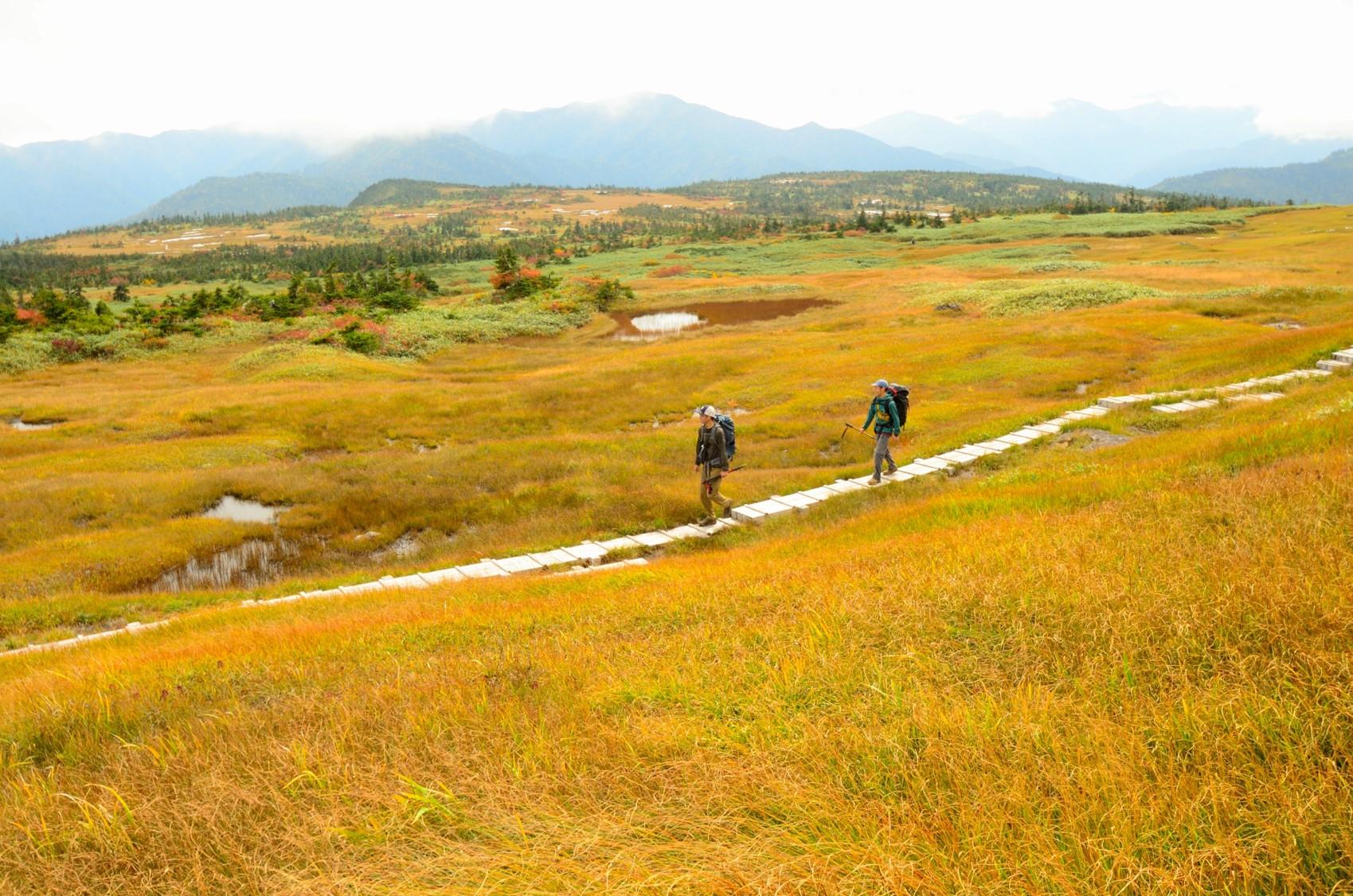 美しい天空の楽園を訪れる<br>ゆっくり日本の名山<br>苗場山(信越トレイルセクション10)