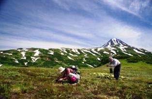 ヴィリチンスキー山麓をフラワー・ハイキング