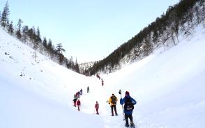 フィンランドらしい風景の中、スノーシュー・ハイキング