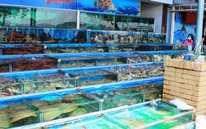 珍しい海産物が巨大な生簀に並ぶ西貢