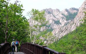 新緑香る千仏洞(チョンブルドン)渓谷を行く