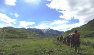 大自然の息吹を感じながらアラスカの大地を歩く