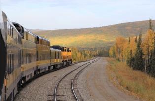 黄葉の中を走りぬけるアラスカ鉄道