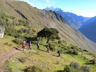 アンデスの高峰群を正面に、好展望のトレイルをゆく