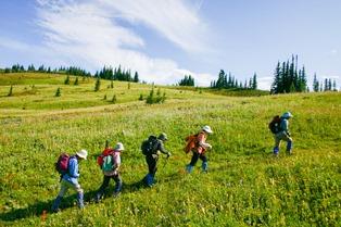 ウェルズグレイ滞在中は、見渡す限りの大自然とお花畑を歩く