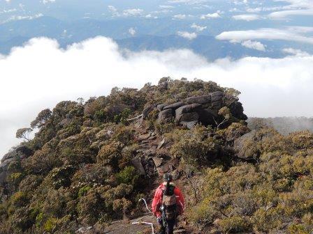 雲海に浮かぶような登山道