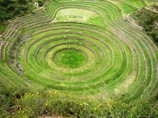 農場試験場とされる円形のモライ遺跡
