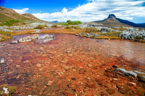 窪地にできた小さな池