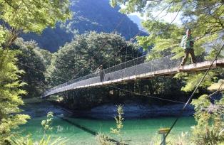 吊り橋を渡ってブナの原生林へ