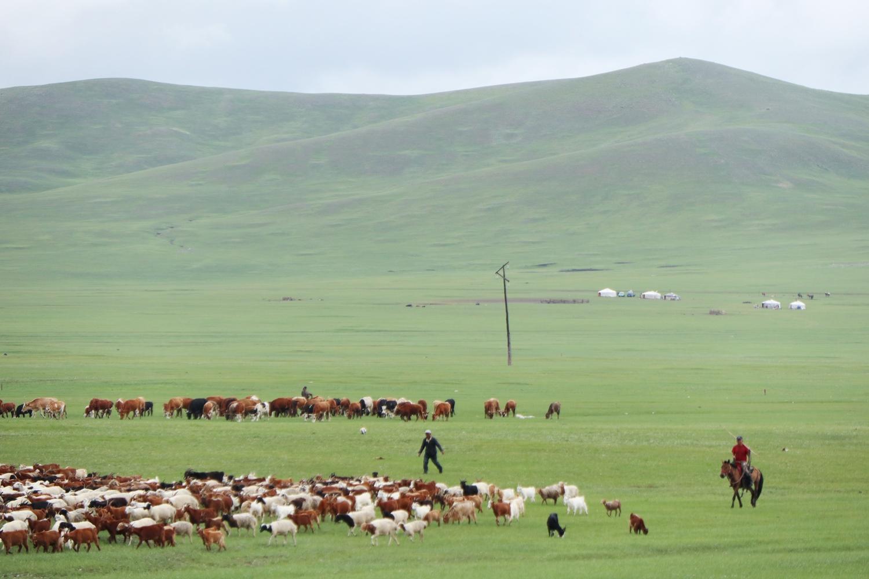 大草原で生活する人々