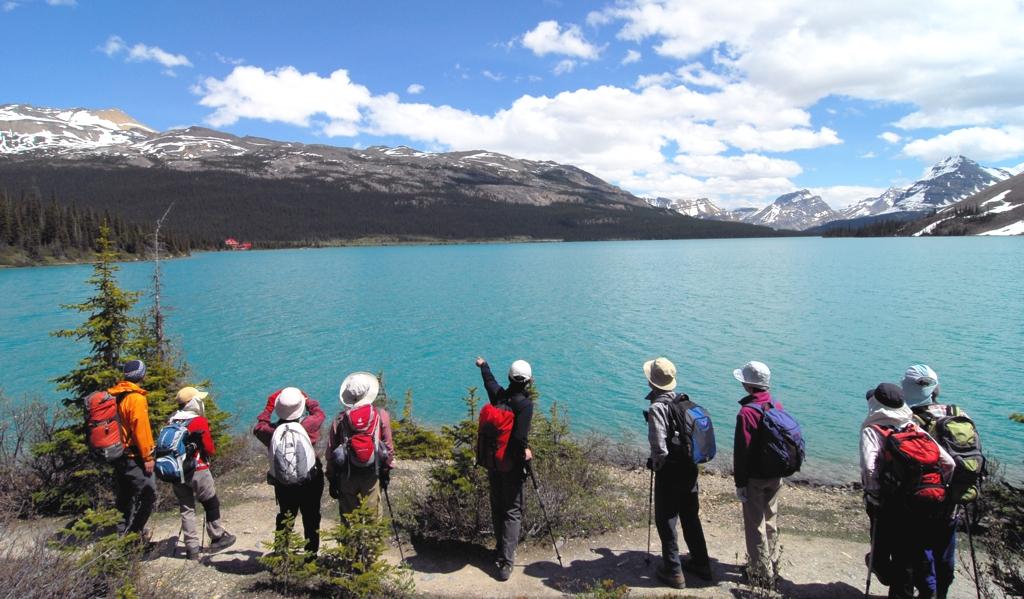 ボウ氷河の展望地を目指す