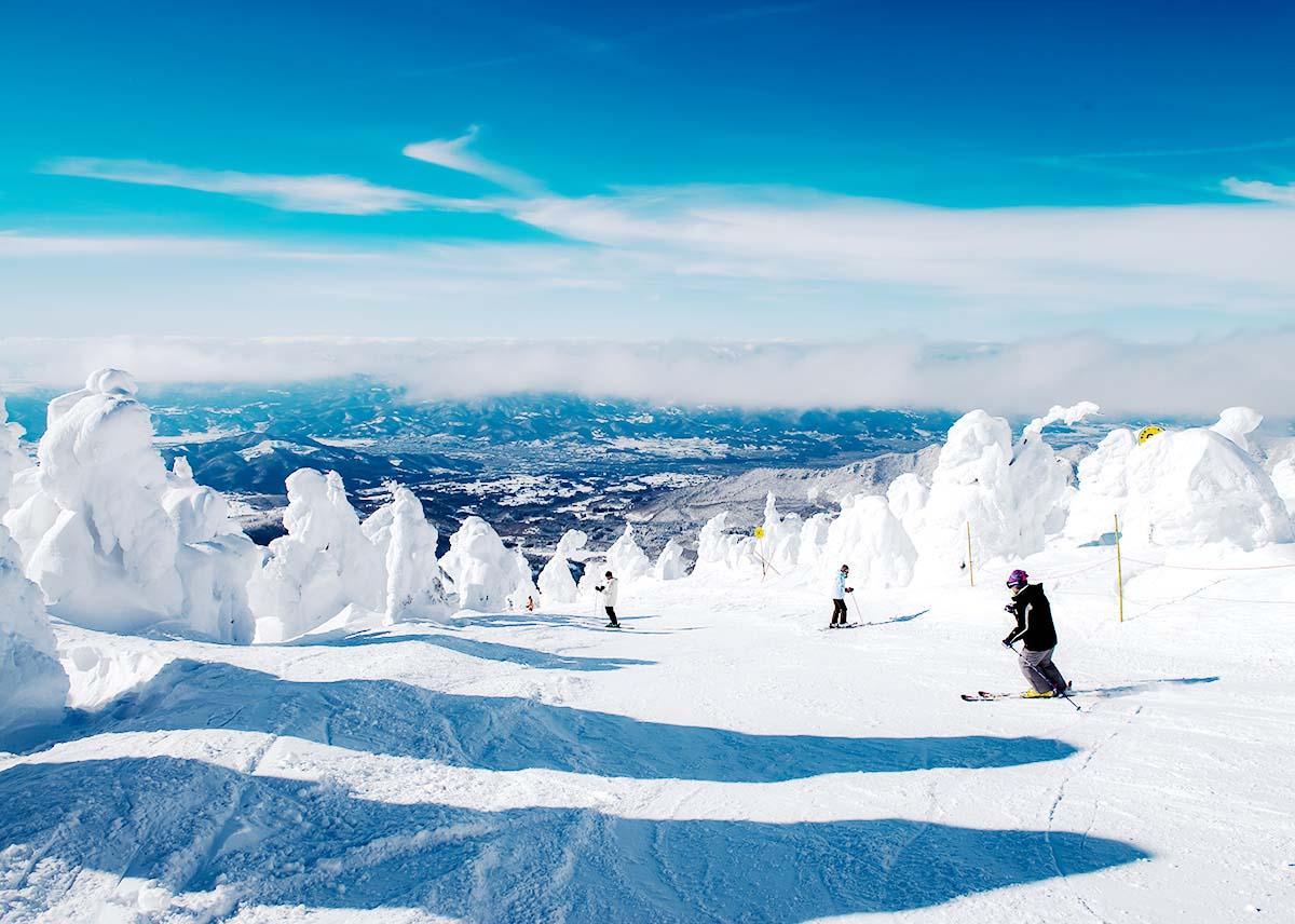 樹氷を見ながらのスキー