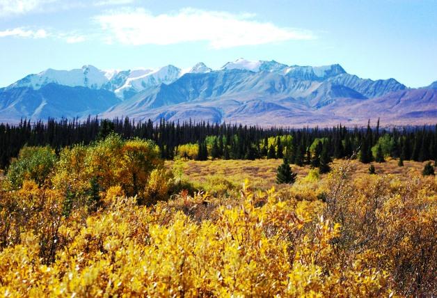 黄葉や紅葉の美しい時期に世界遺産クルアニ国立公園を訪れる