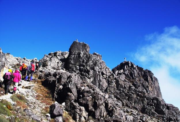 南太平洋の名峰・ウィルヘルム山(4,508m)へ向かって(右側のピークが山頂)
