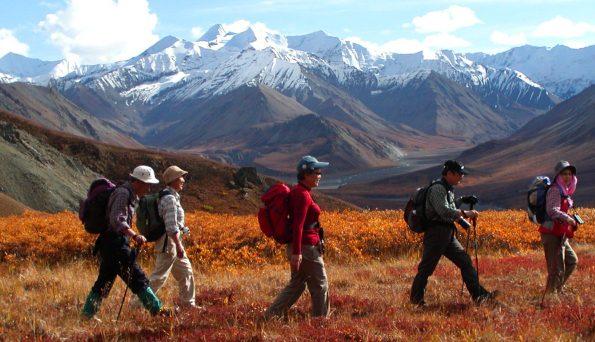 雄大な景色の中、草紅葉の絨毯を歩く
