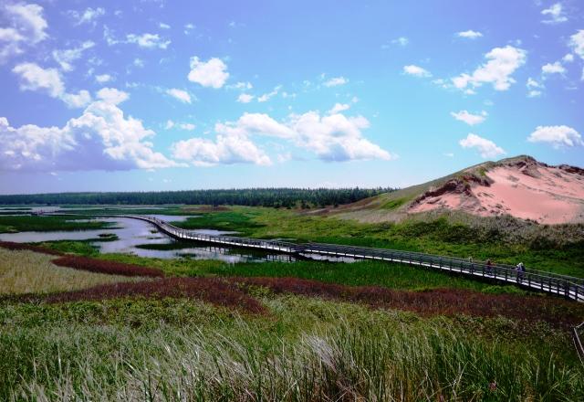 砂丘や湿原の広がるグリニッジ国立公園
