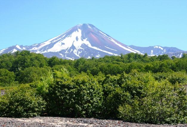 山麓からのアバチャ山(2,741m)