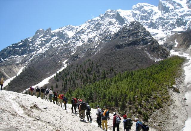 快適な登山道を歩く