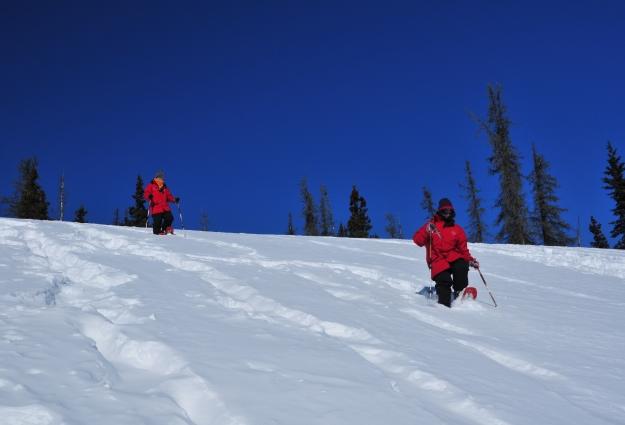 降り積もった雪の上で童心にかえって遊ぶ