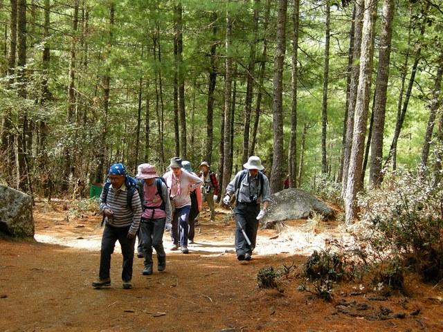 森の中を歩きタクツァン僧院へ