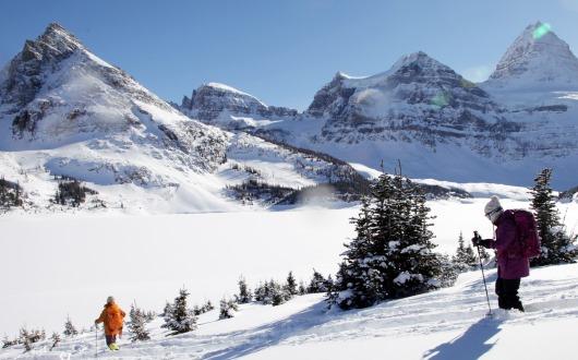 最高のスノーフィールドとスノーシュー・ハイキング