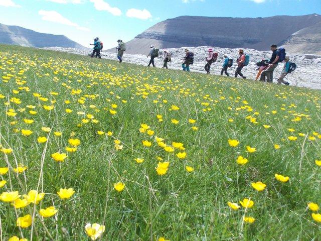 ピレネーの草原を歩く