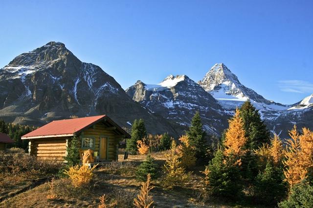 秋色に染まるMt.アシニボインの麓にゆったり3連泊し、ロッキーの奥深い自然を満喫する