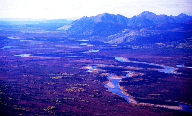 フェアバンクスから北極圏のベツルスロッジへ、アラスカの雄大な大地の上をいく