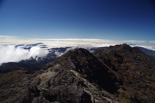 ウィルヘルム山頂からの眺め