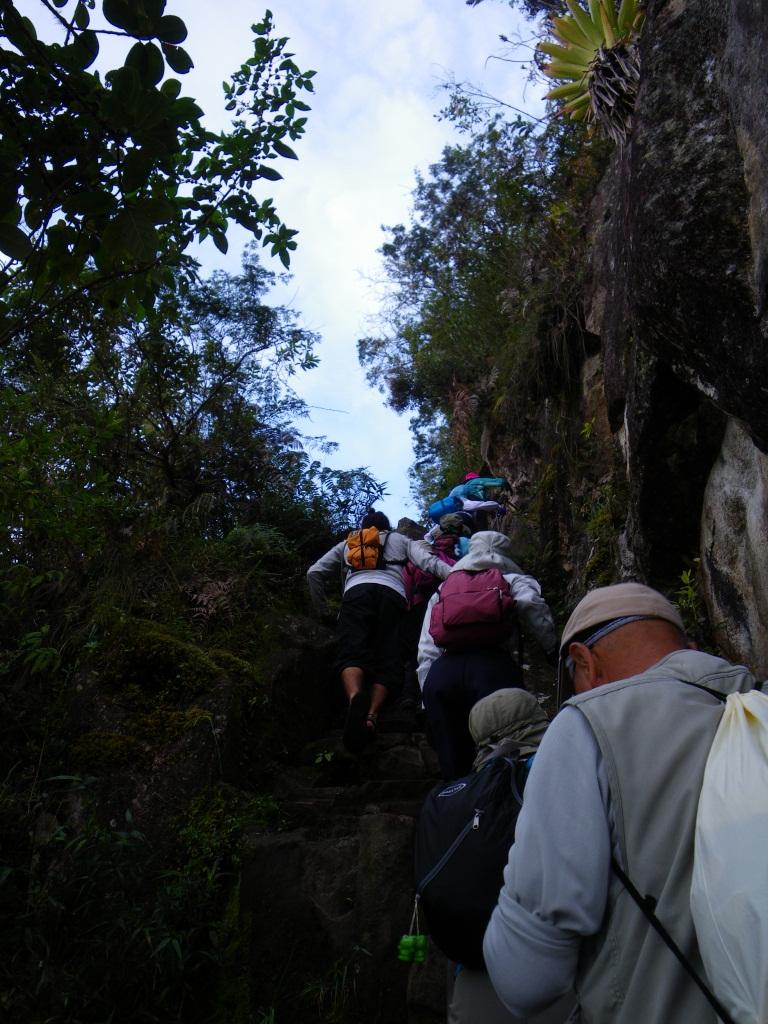ワイナピチュ山では急登が続く