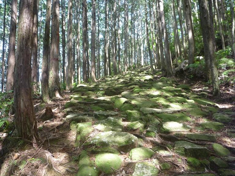 美しい石畳の道