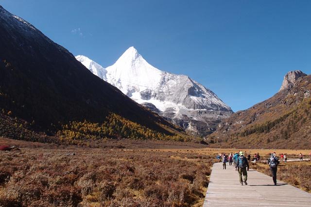 ヤンマイヨン(5,958m)を正面に洛絨(ルオロン)周辺の木道を行く
