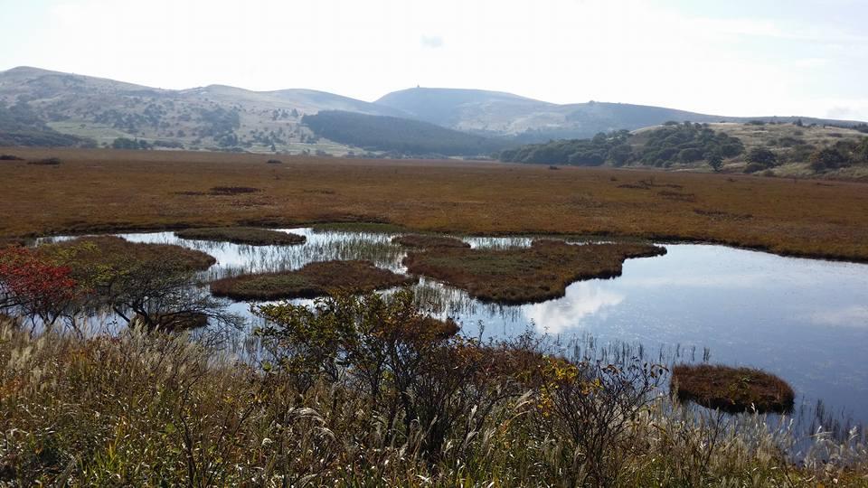 八島ヶ原湿原と 車山(中央奥)