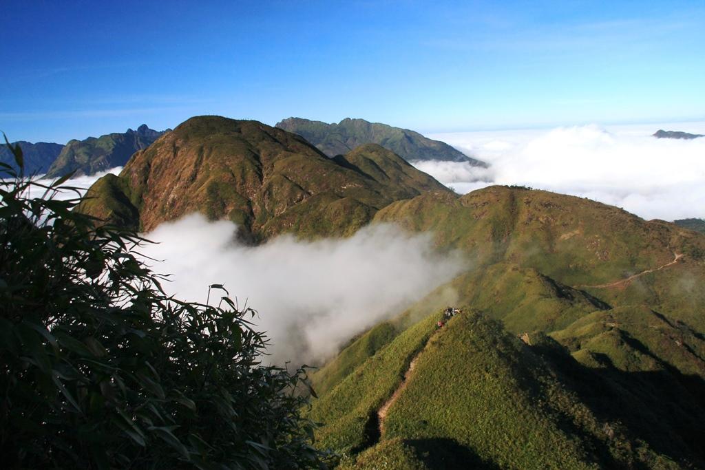 第一キャンプを越え、眺めの良い笹原の稜線を行く