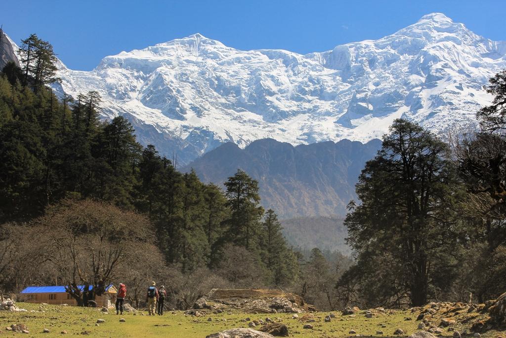 ゴ~ビムタン間にあるヤクカルカからのラルキャ・ヒマール(6,249m)